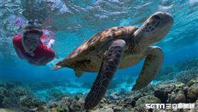 伊利特女士島以其未經破壞的珊瑚礁和種類豐富的繽紛海洋生物聞名。(圖/澳洲昆士蘭州旅遊暨活動推廣局提供)
