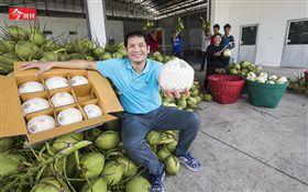 讓阿里巴巴主動談合作 他用台灣技術+泰國水果大賺中國財(勿用)