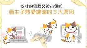 名家/毛起來/電腦又被占領啦(哭)貓貓熱愛鍵盤的原因是?!
