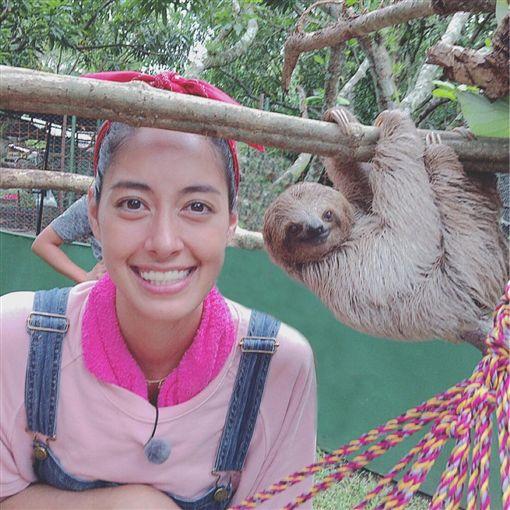 ▲森泉在演藝圈是出名的愛動物,家中養了30隻寵物。(圖/翻攝自臉書)