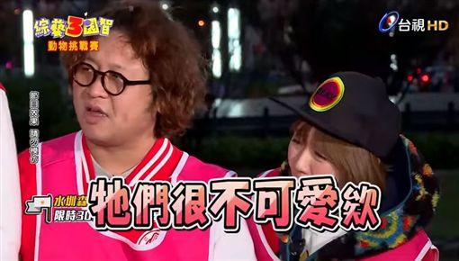 綜藝3國智,邱慧雯(圖/翻攝自台視YouTube)