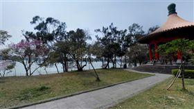高雄澄清湖(圖/翻攝自Google地圖)