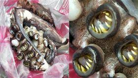 章魚腳,牙齒,爪牙(翻攝臉書《爆系廚藝訓練學院》)