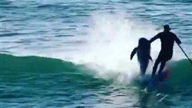 澳洲衝浪客被海豚撞飛/IG