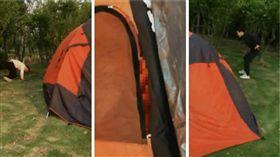 野外帳篷三P,圖/翻攝自秒拍