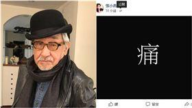 張小燕(合成圖/翻攝自臉書)