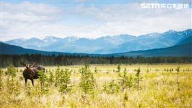 加拿大自然美景。(圖/加航提供)