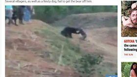 印度,男子,巴塔拉,懶熊,自拍,咬死,死亡(圖/翻攝自英國《太陽報》)