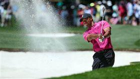 伍茲(Tiger Woods)。(圖/路透/志達影像)