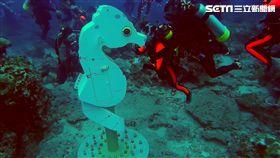 超越和歌山! 全球最深豆丁海馬郵筒啟用