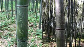 「李偉立到此一遊」 京都嵐山竹林遭遊客破壞