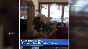 美熊闖廚房1200