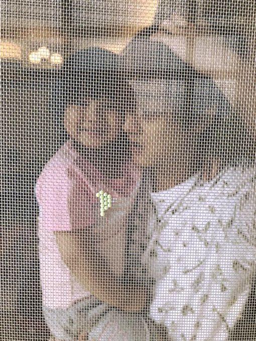 ▲▼「那對夫妻」在家中紗窗發現不明生物入侵。(圖/翻攝自臉書)