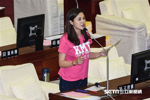 台北市議員王欣儀質詢。 (圖/記者林敬旻攝)