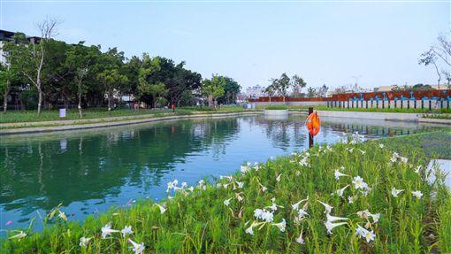 軟埤仔溪水域環境景觀。