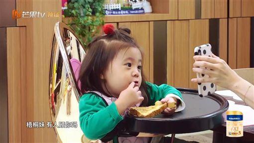 賈靜雯,梧桐妹,媽媽是超人3,咘咘,/翻攝自YouTube