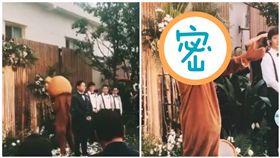 薛之謙,婚禮,布偶裝,歌迷,無限歌謠季,新娘,驚喜(圖/翻攝自微博)
