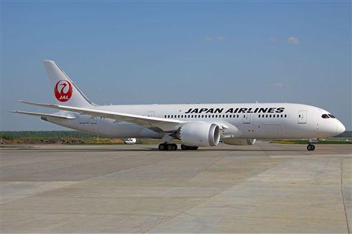 日本航空787-8。(圖/翻攝自維基百科)  https://zh.wikipedia.org/wiki/%E6%97%A5%E6%9C%AC%E8%88%AA%E7%A9%BA#/media/File:Japan_Airlines_Boeing_787-846_Dreamliner_Kustov.jpg