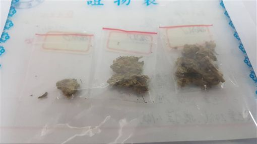 大同警方在簡姓饒舌歌手身上搜出3包大麻,訊後依毒品罪送辦(翻攝畫面)