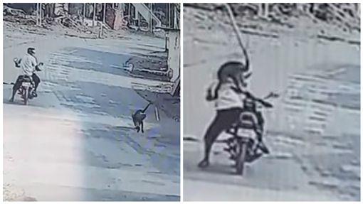 印度潑猴不斷攻擊村民(合成圖/翻攝自YouTube)