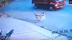 印度潑猴不斷攻擊村民(圖/翻攝自YouTube)