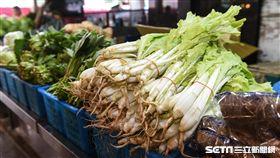 過年,年貨,市場,青菜,菜價。 圖/記者林敬旻攝