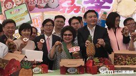 總統府祕書長陳菊(22日)今至立法院受訪時強調,自己「不會參選台北市。」(圖/記者林惟崧攝)
