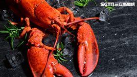 北美太子龍蝦鮮蠔饗宴。(圖/君品酒店提供)