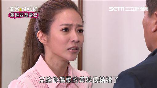 金家好媳婦,江宏恩,高宇蓁