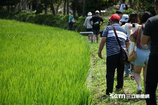 墾丁華泰瑞苑全包式旅遊行程,摸蛤仔,紅龜粿。(圖/記者簡佑庭攝)
