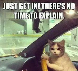 「老司機求感挽回上車」 到底是什抓姦麼?