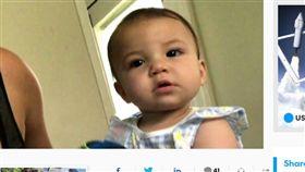 養4年忠犬突暴走 咬死8個月大女嬰 比特犬,咬死,女嬰,崩潰,動物管制,忠犬,抓狂,暴走 https://www.usatoday.com/story/news/nation-now/2018/05/30/pet-dog-kills-florida-baby/656666002/