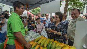 總統府秘書長陳菊上午在農委會主委林聰賢的陪同下,參觀特色農產品市集。(圖/翻攝蔡英文臉書)