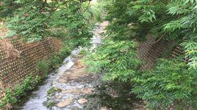 名家/環境資訊中心/梅雨不來卻「放水流」 建案、河川工程虛耗水資源