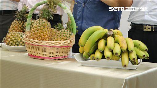 香蕉,農委會,鳳梨,金鑽鳳梨,農民,價格