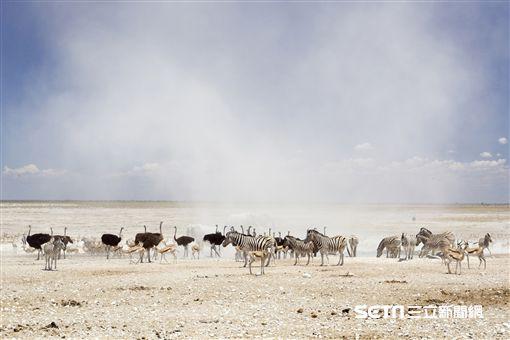 非洲納米比亞旅遊。(圖/雄獅旅遊提供)