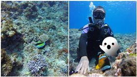 蘭嶼,海底,第三隻手,靈異照片,小丑魚,海龜,指甲,手,錯位(圖/翻攝自爆廢公社)