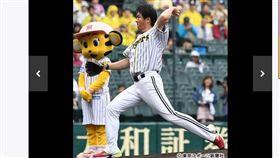 ▲中信兄弟二軍總教練林威助回甲子園開球。(圖/截自日本媒體)