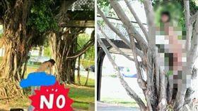 一名網友今(7)日帶女兒到公園時,看見一位女孩全身光溜溜的在玩耍、爬樹,當時周遭一堆男生,而女孩媽媽竟坐在旁邊聊天。其他網友看到後,紛紛直呼「太離譜了!」(圖/翻攝自爆怨公社)