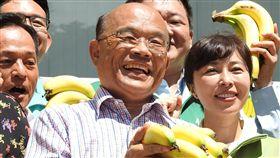 行動挺蕉農 蘇貞昌與新北綠營認購香蕉香蕉盛產價跌,民進黨提名新北市長參選人蘇貞昌(前中)7日以實際行動力挺蕉農,與民進黨新北市議會黨團及市黨部認購香蕉,也呼籲大家一起吃香蕉。中央社記者王鴻國攝 107年6月7日