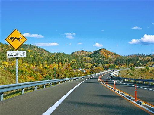 日本五大自駕天堂。(圖/易遊網提供)