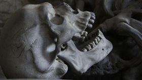骨頭,人骨(圖/翻攝自Pixabay)