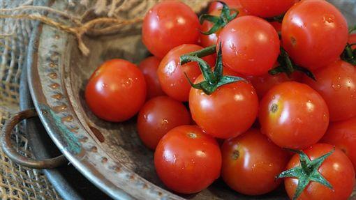 番茄、小番茄/pixabay