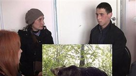俄羅斯,西伯利亞,野熊,森林,手機,訊號 圖/翻攝自《西伯利亞時報》