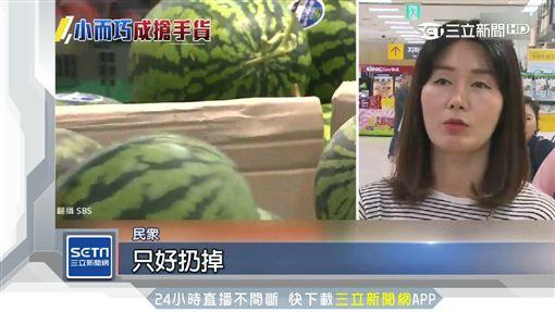 西瓜跟蘋果一樣大 迷你商機現正夯