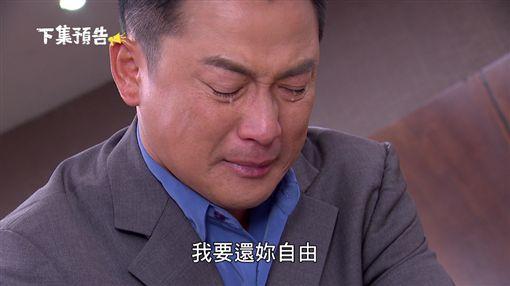 金家好媳婦 江宏恩 高宇蓁