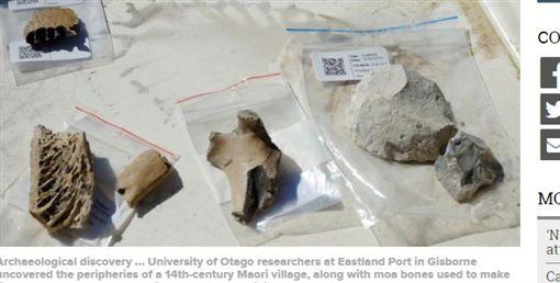 紐西蘭,毛利人,恐鳥,考古,村落,遺址,骨頭(圖/翻攝自Otago Daily Times)