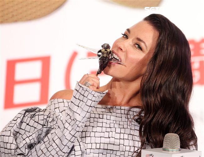 黃蜂女伊凡潔琳莉莉。(記者邱榮吉/攝影)