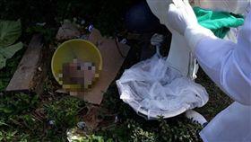 巴西,男嬰,分屍,生殖器,肢解,酷刑,棄屍(圖/翻攝自臉書)