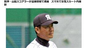 阪神虎球隊紀錄員山脇光治。(圖/翻攝自daily)